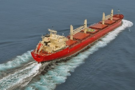 Fednav takes ownership of 60th bulk carrier