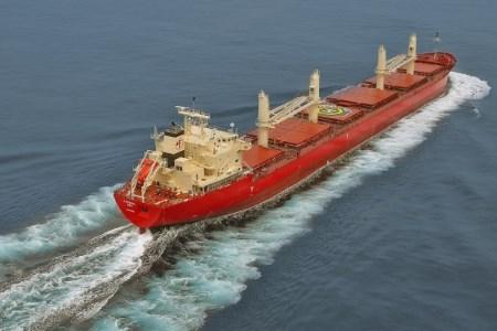 Fednav takes ownership of 60th bulk carrier